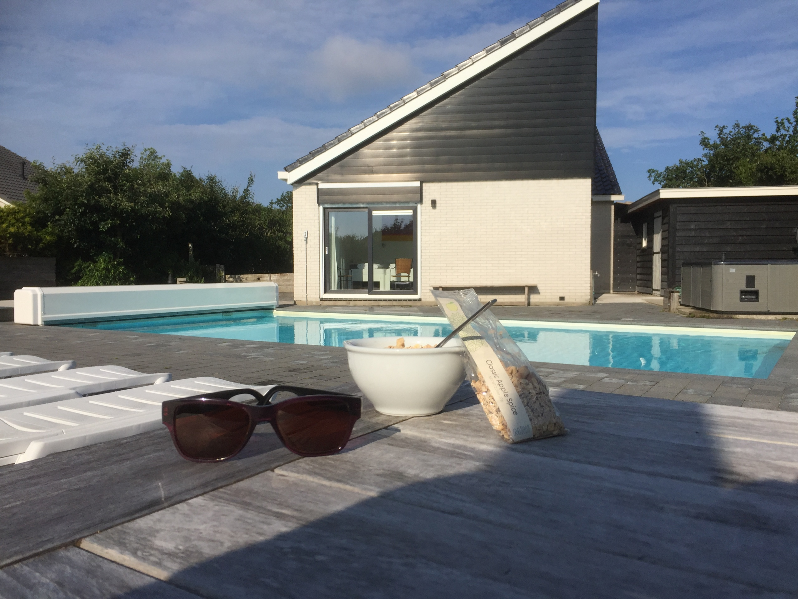 Luxury wellness holiday home with swimming pool and jacuzzi near the sea in De Koog
