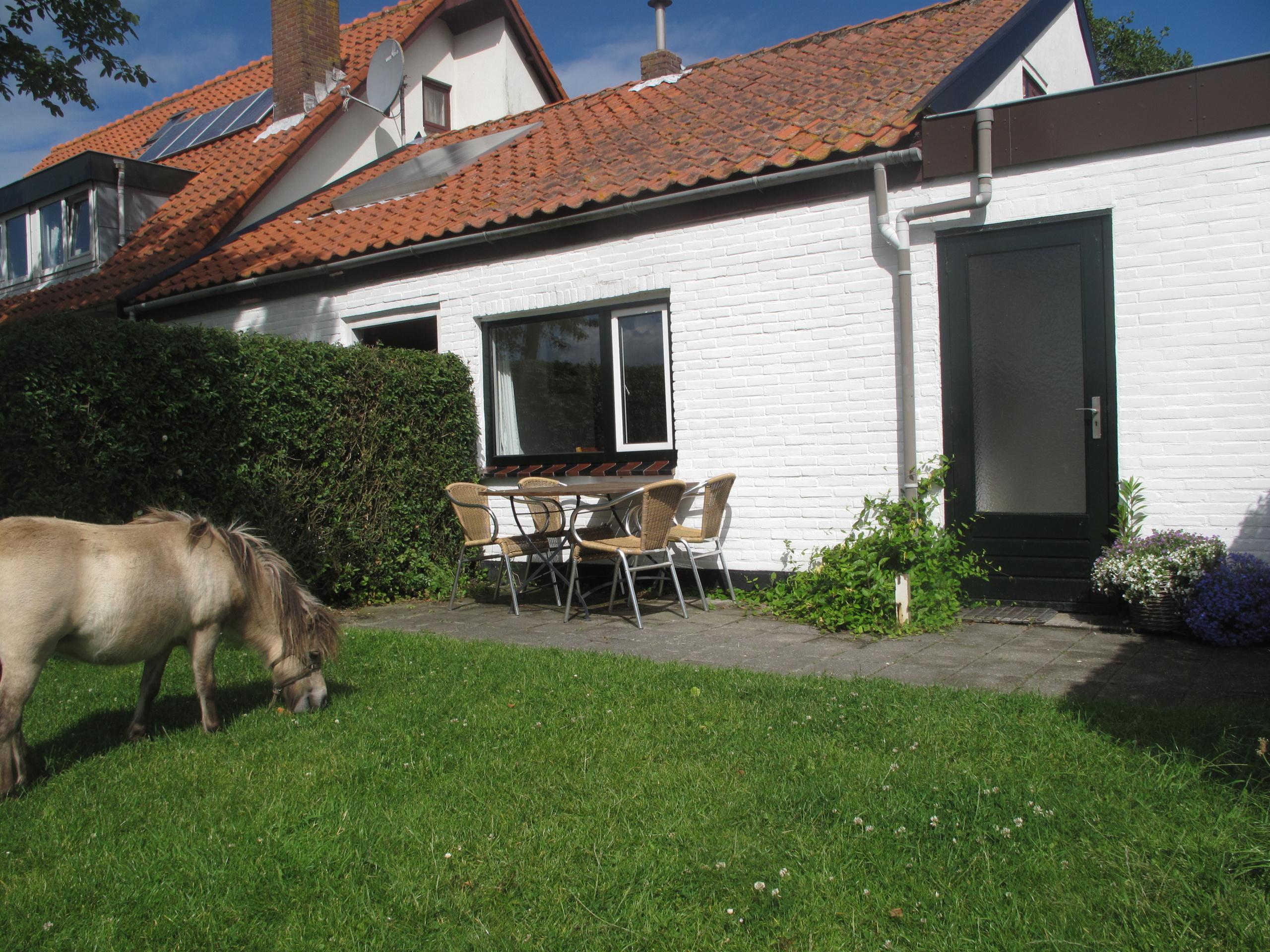 Entspannen in gemütlich Ferienhaus auf einem Privatgrundstück zwischen Texels Wiesen und Tieren