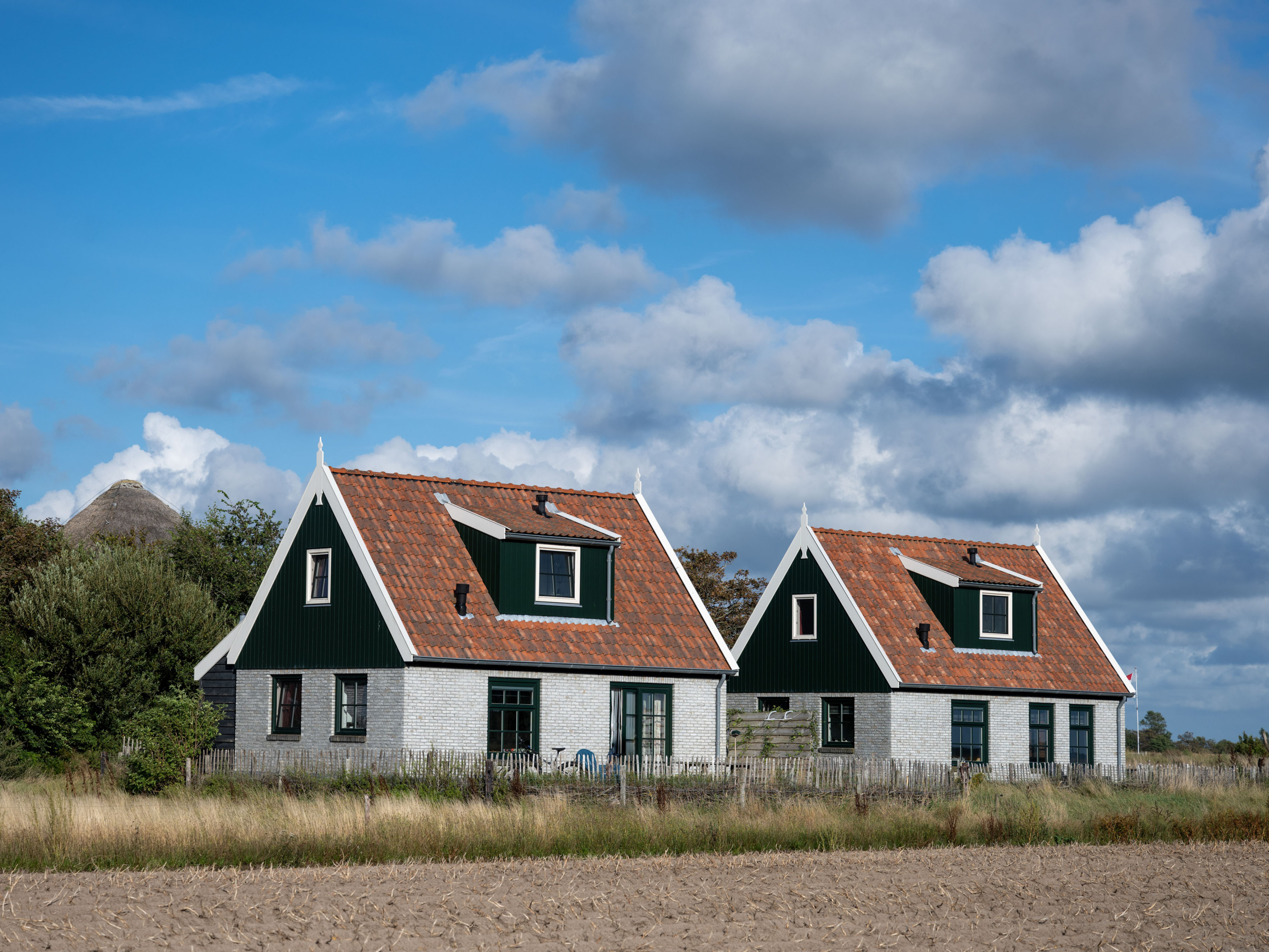 Detached holiday home with thatched roof a short distance from De Waal and Den Burg
