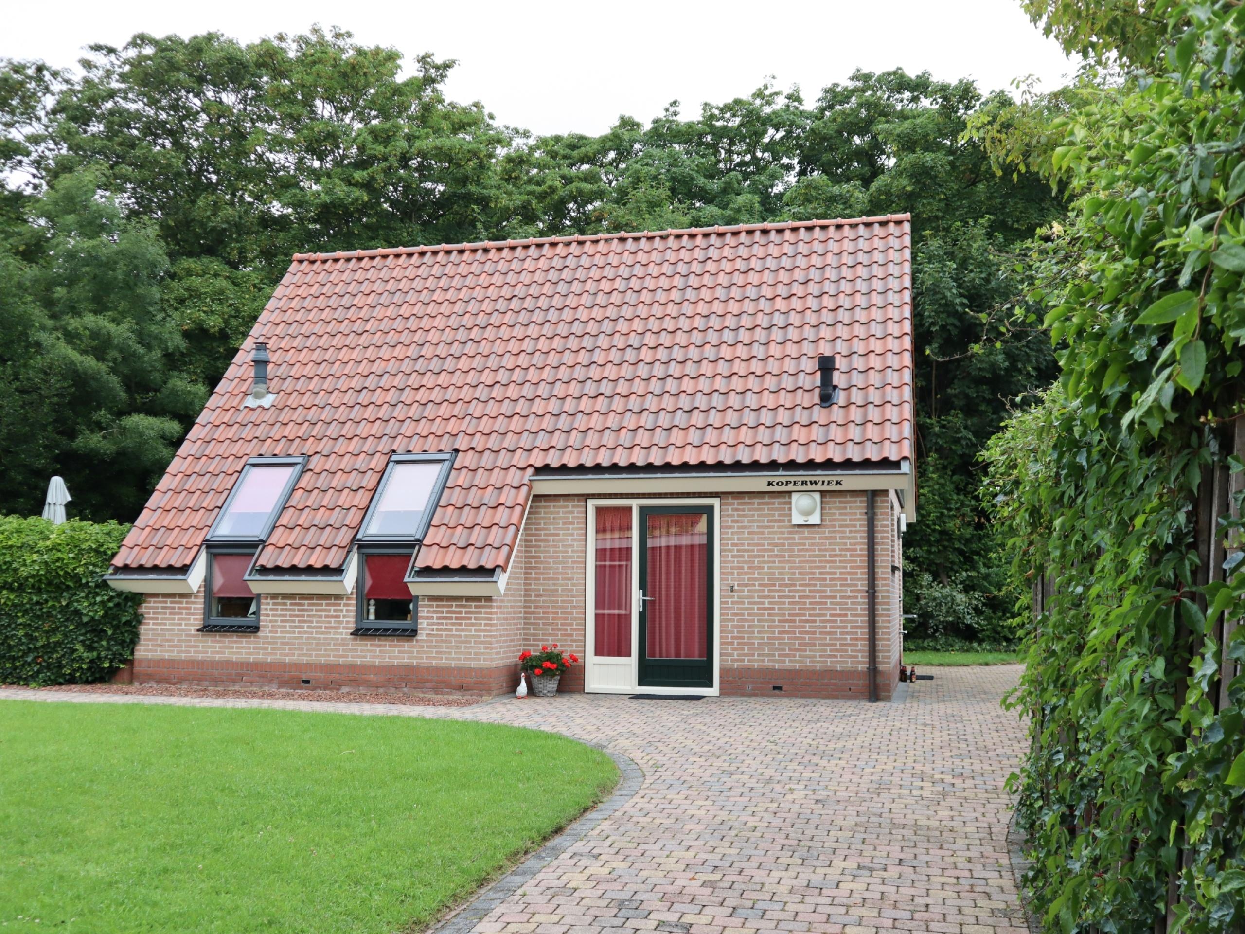 Ruhig gelegenes freistehendes Ferienhaus mit Kamin in Den Burg