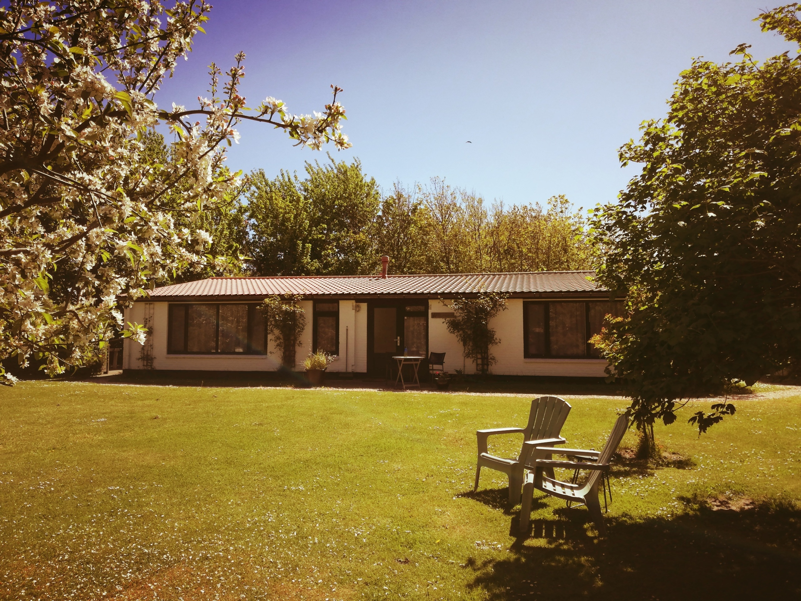 Attractive holiday home in a particularly beautiful location near De Cocksdorp