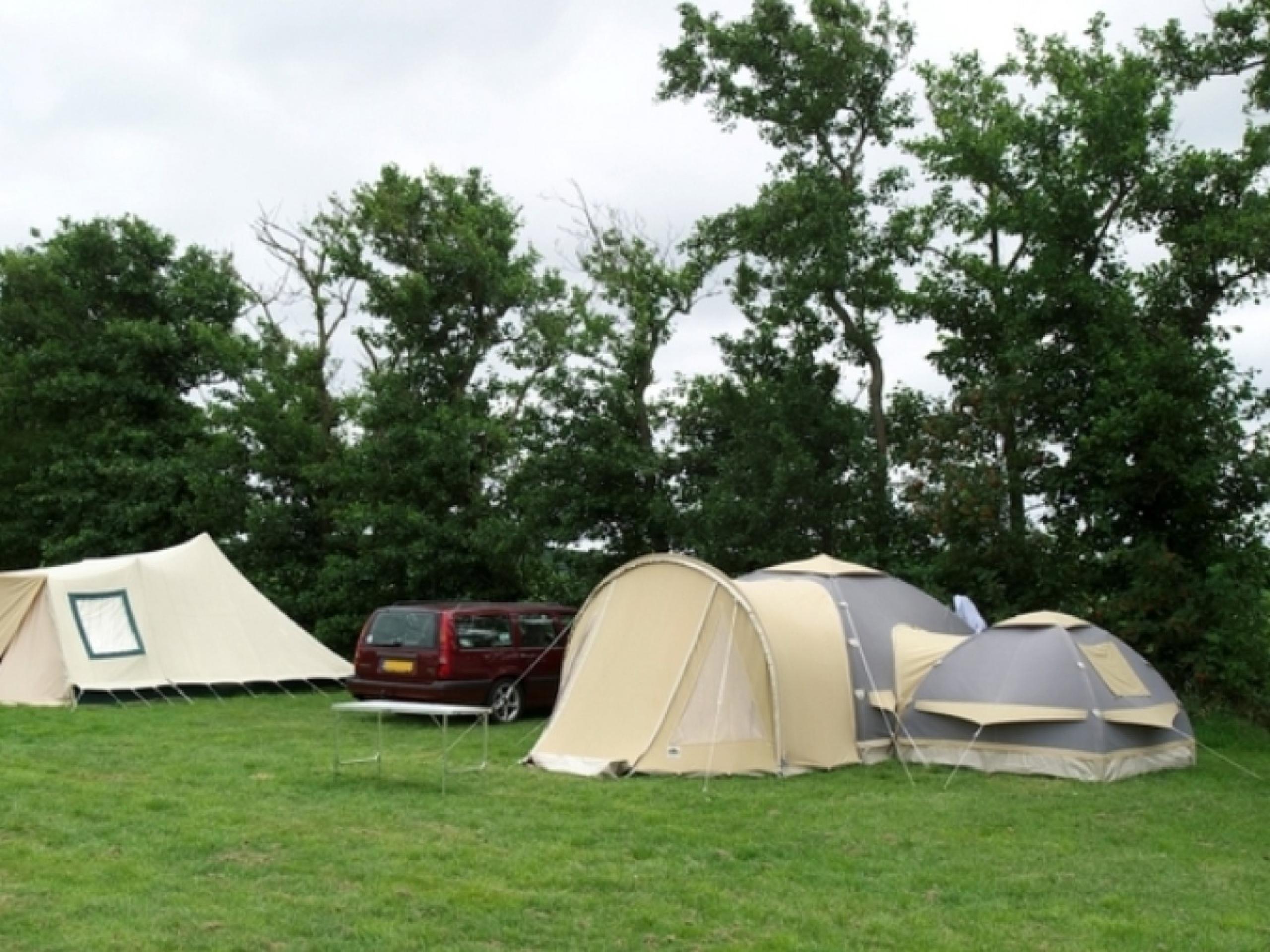 Schöner ländlicher Campingplatz auf Schaffarm in einzigartigen ruhigen Ort in der Nähe von Den Burg