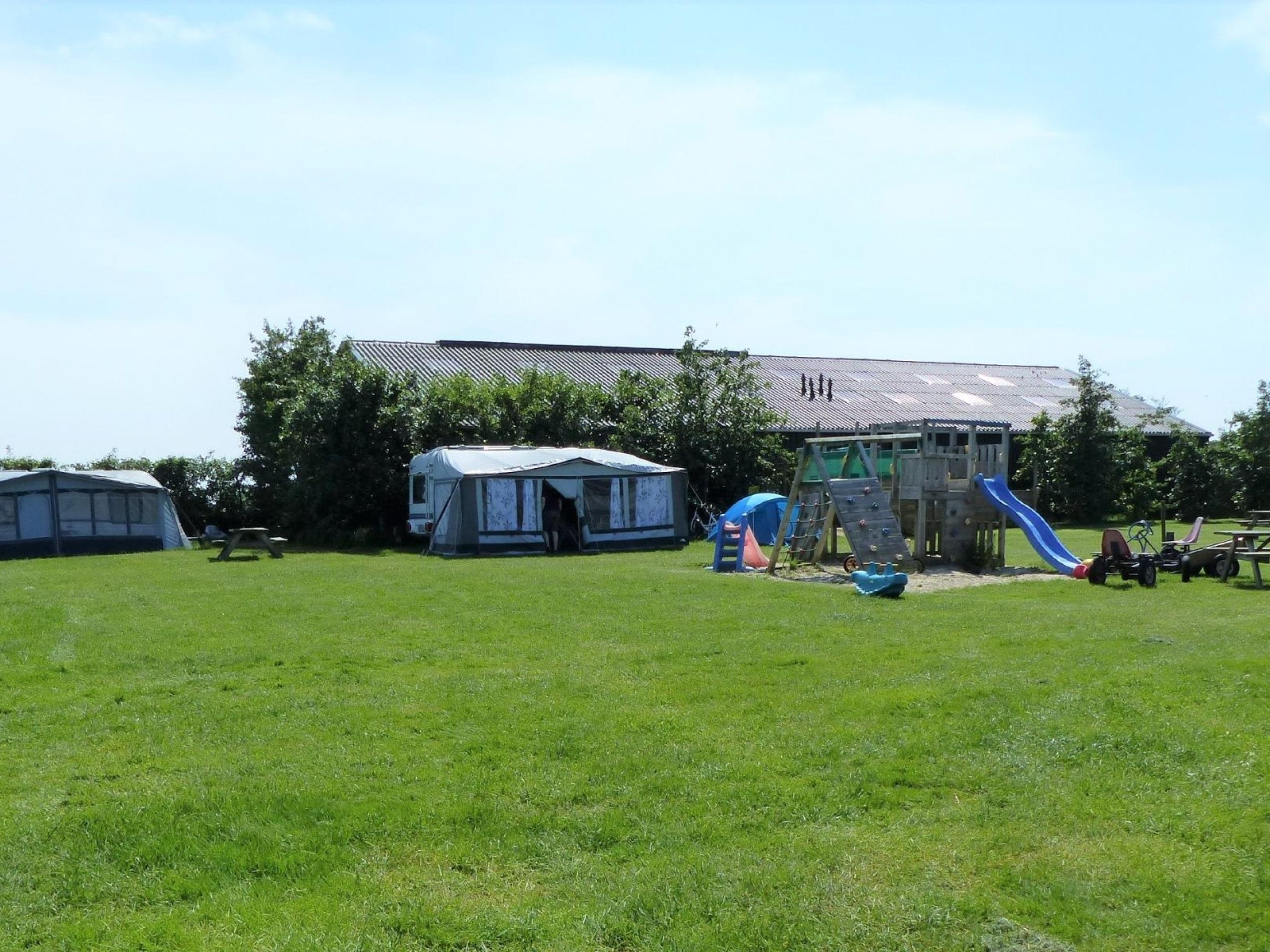 Unwind among the cows and sheep on this campsite near De Koog