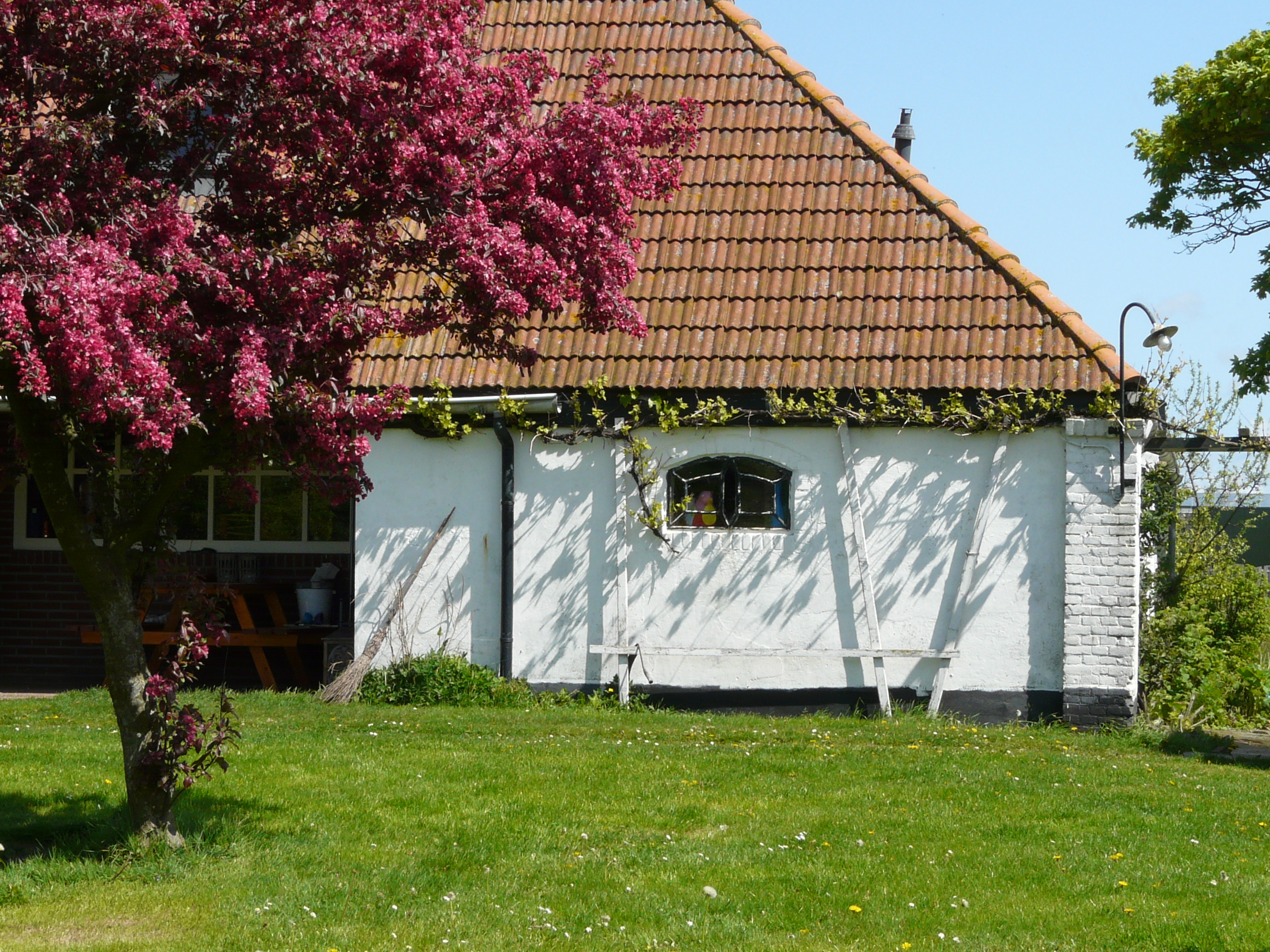 Converted farmhouse accommodation with wide views near Oosterend