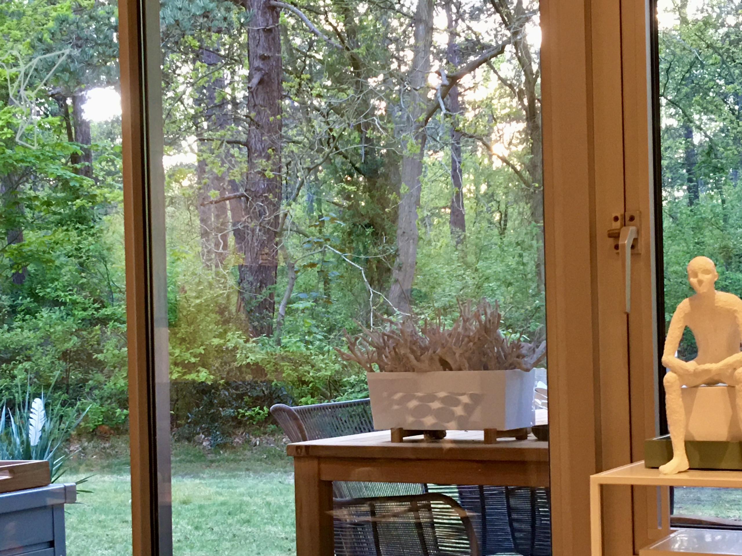 Klein en comfortabel appartement direct uitzicht op het bos
