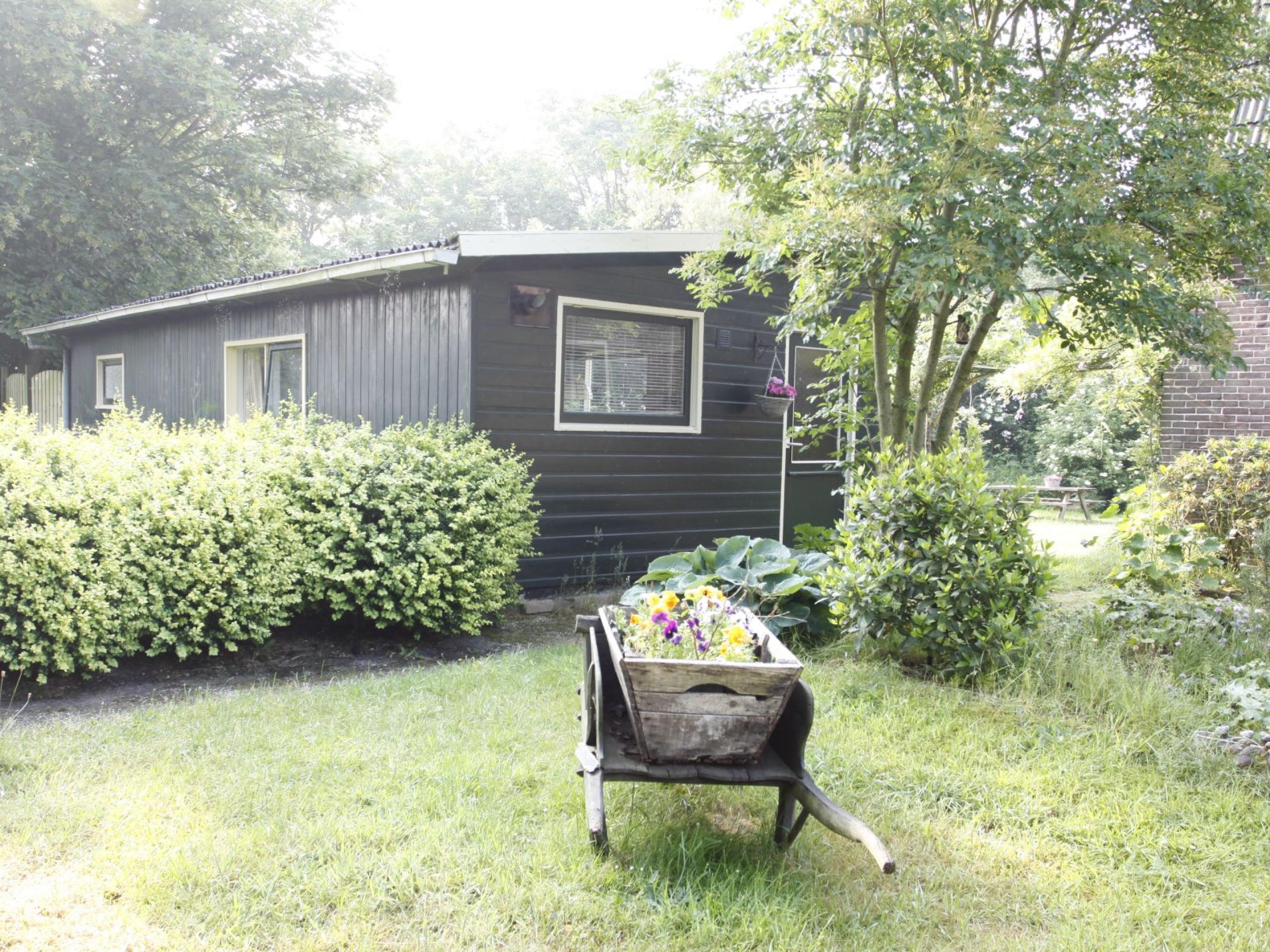 Onthaasten in knus vakantiehuis op prachtige lokatie bij Oosterend
