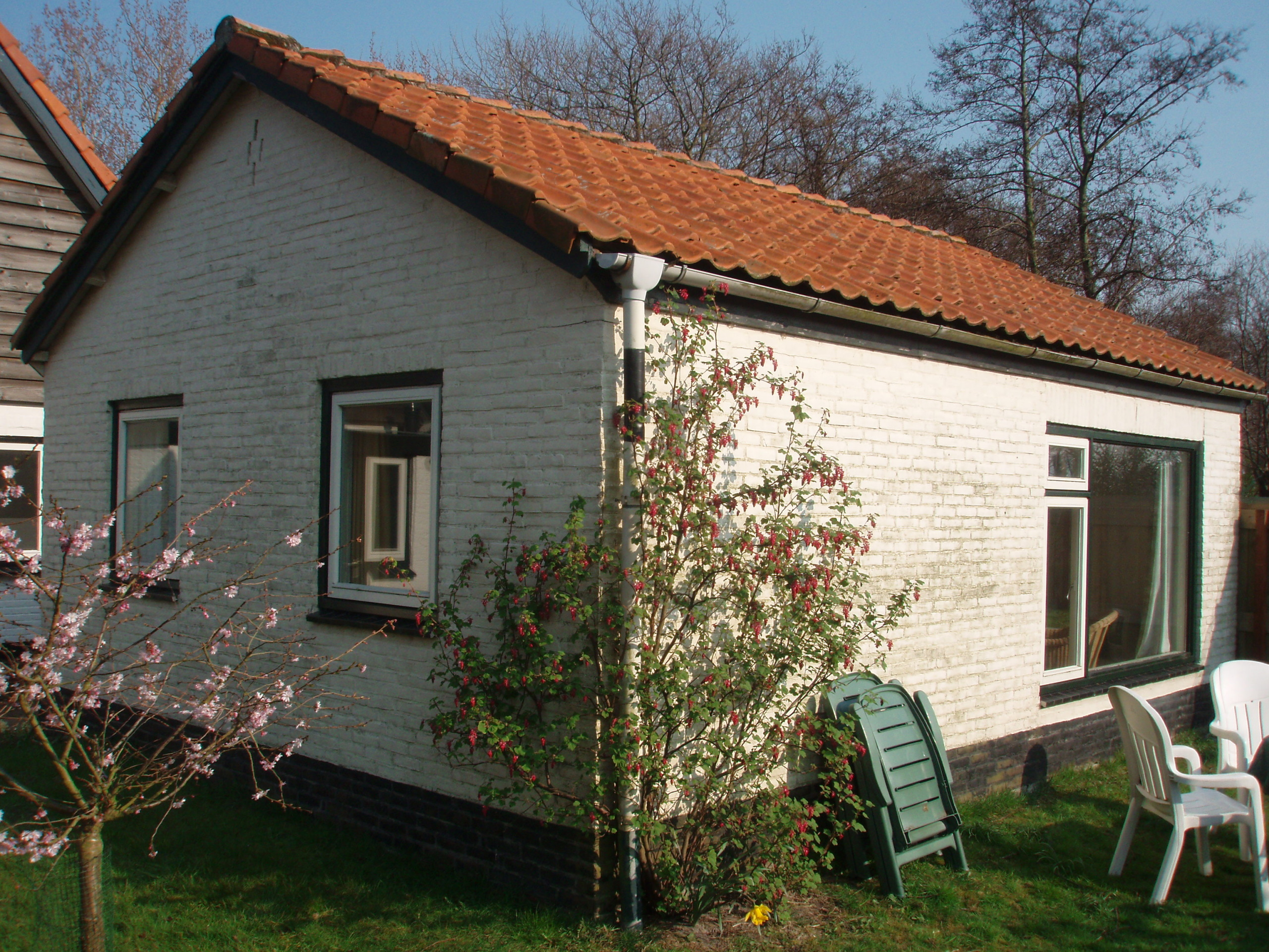 Very nice holiday home with lots of privacy at forest De Dennen